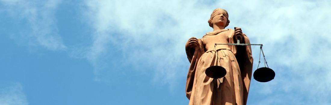 Litigation-Support